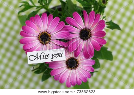 Miss you card with pink gerbera daisies