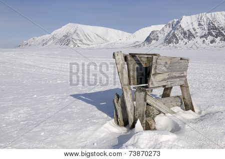 Polar bear trap