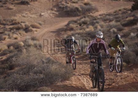 Three People Riding Mountain Bikes
