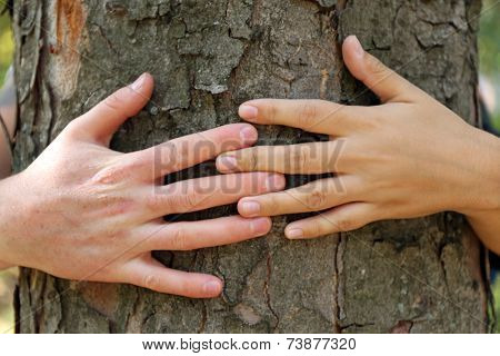 Two persons hugging trunk large tree, close-up