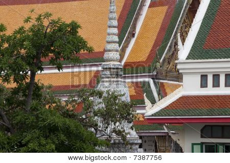 Tree And Building Detail At Wat Arun Temple
