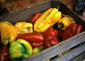 stock photo of wooden crate  - The rustic-looking wooden crate adds a sense of place to these peppers, on display in a market in Rome, Italy.