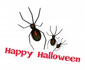 picture of black widow spider  - An Illustration of Black Terrible Halloween Spiders Isolated on White Background Sign for Happy Halloween Celebration - JPG