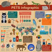 foto of vet  - Domestic pets infographic elements helthcare vet - JPG
