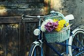 image of door  - Old bicycle with flowers in metal basket on old brown door background - JPG