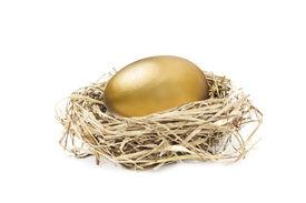 image of nest-egg  - big golden nest egg isolated on white background - JPG