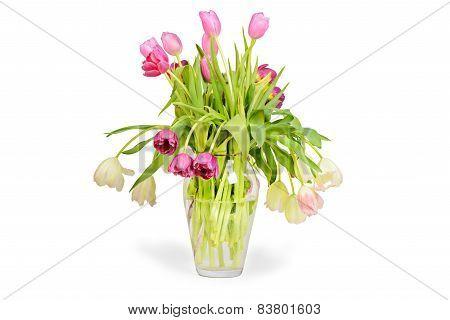 Pink tulips bouquet in vase
