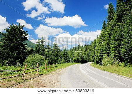 Road in the mountains - summer time