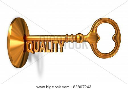 Quality - Golden Key is Inserted into the Keyhole.