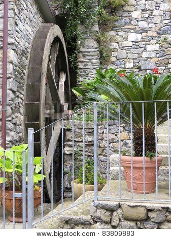 Garden setting in Manarola, Italy