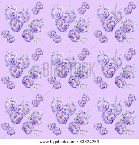Pattern From The Flowers Of Crocus