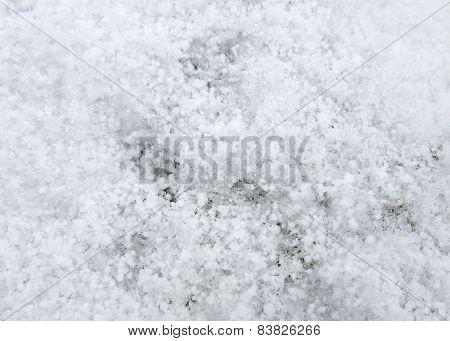 Frosty Surface