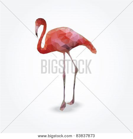 Modern Polygon Illustration Of Flamingo, Vector