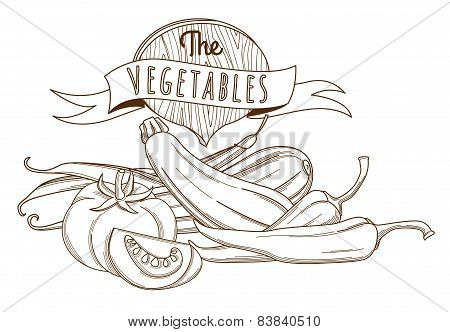 Outline hand drawn sketch vegetable still life flat style, thin