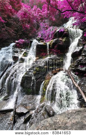 Cascading waterfall with edited foliage colors to look like flowering spring trees