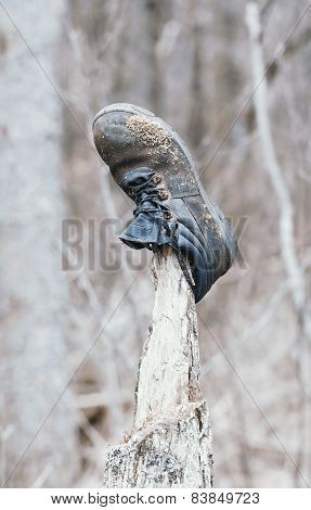 Old lost boot in forest