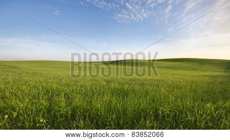Agrarian field