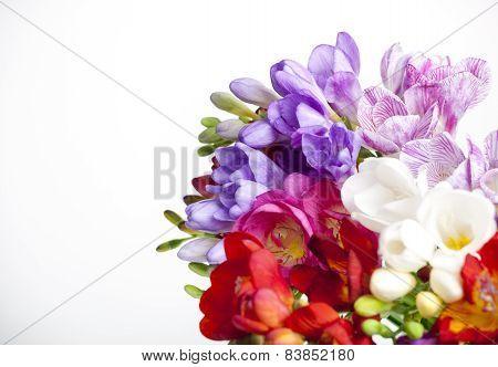 Beautiful Bouquet Of Colorful Freesia