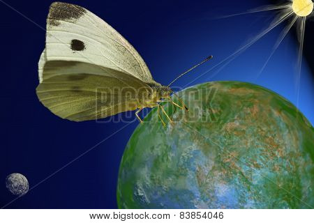 cosmical butterfly