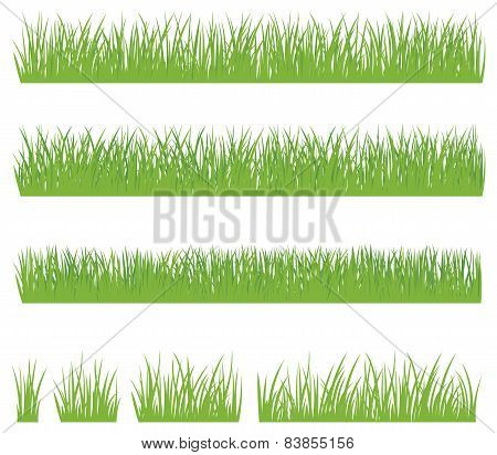 Set Of Green Grass Isolated On White Background