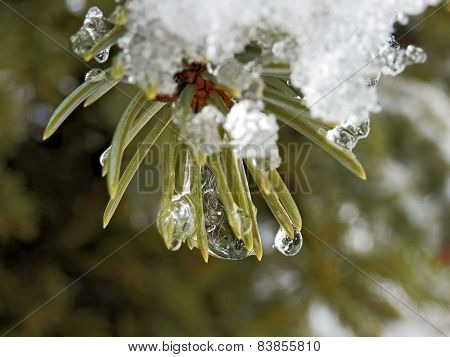Snow And Ice Melting In Spring