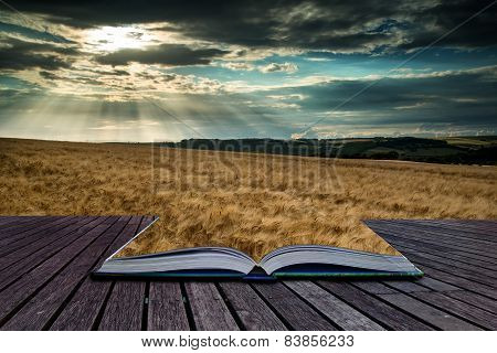 Stunning Countryside Landscape Wheat Field In Summer Sunset Conceptual Book Image