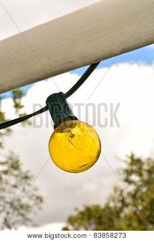 gold light bulb