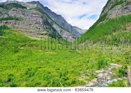 Gorgeous View Of The Mountains In Bright Sunlight Along The Avalanche Lake Trail In Glacier National