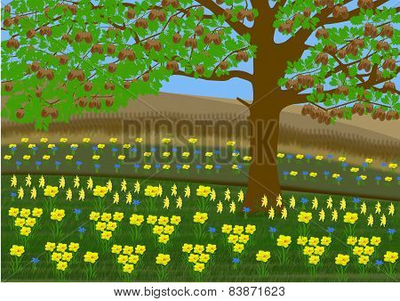 Landscape With Oak Tree And English Flowers