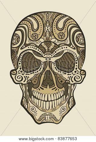 Decorative Isolated Human Skull