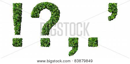 ! ? , . ' alphabet letters made from green leaves isolated on white background