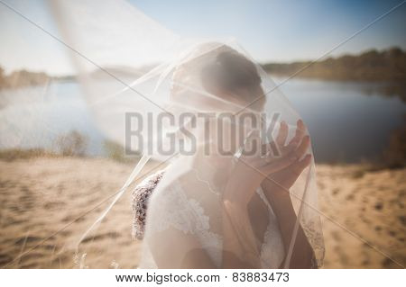 portrait of happy bride with head covered bridalveil