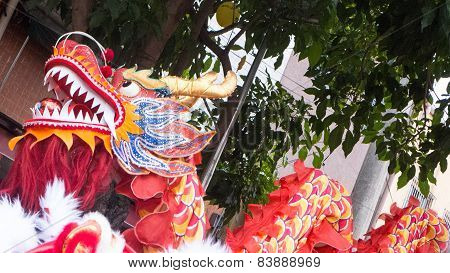 Chinese Dragon On Street Festival Moving Left
