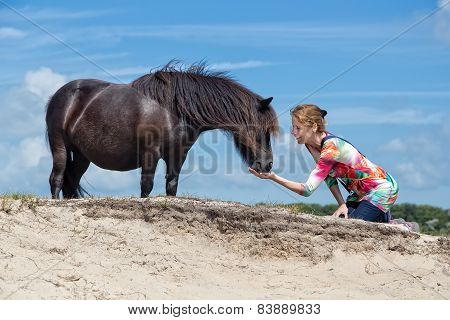Woman on knees feeding black pony in nature