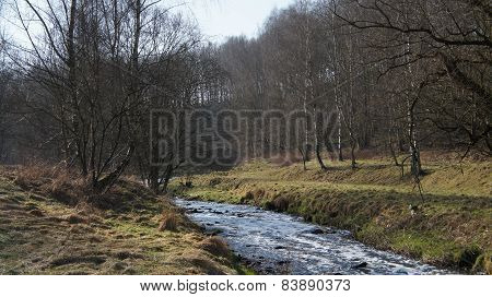 A little valley in winter