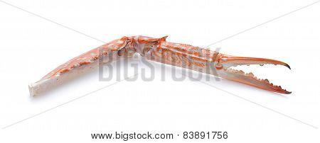 Claw Crab Isolated On White Background