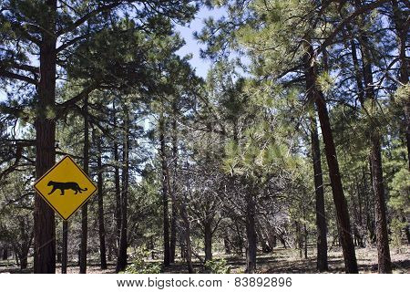 Leopard Warning Road Sign