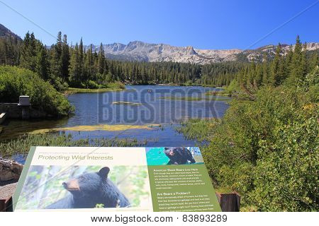 Landscape Of Mammoth Lakes