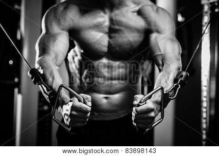 Bodybuilder Guy In Gym Hands Close Up