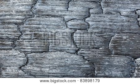Background of burnt black wood