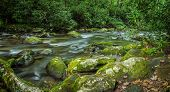 stock photo of gatlinburg  - River rushes through the lush spring foliage of the Great Smoky Mountain National Park - JPG