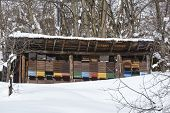 stock photo of beehive  - Some beehives near the Gotthard massif in the Swiss canton Ticino  - JPG