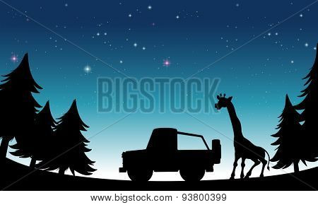Silhouette jeep and giraffe at night time