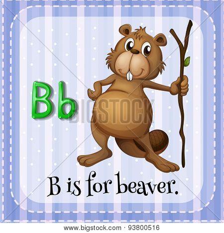Flashcard letter B is for beaver