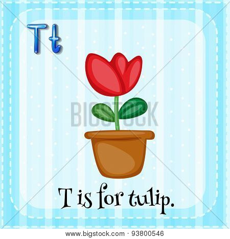 Flashcard letter T is tulip
