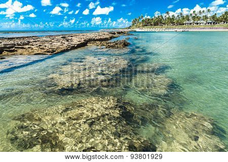 The Great Reef Barrier in Porto de Galinhas, Brazil