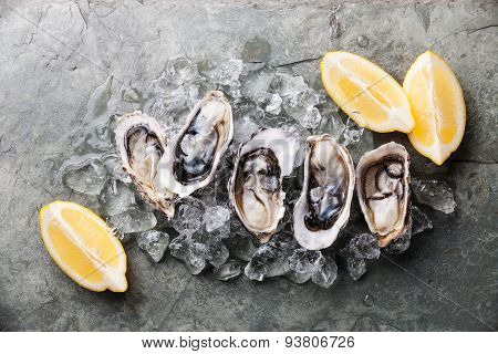 Opened Oysters On Stone Plate With Ice And Lemon