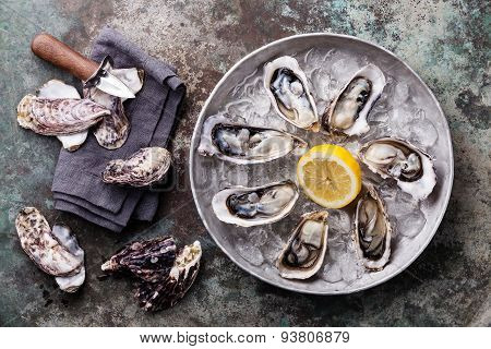 Opened Oysters On Metal Plate With Ice And Lemon On Metal Background