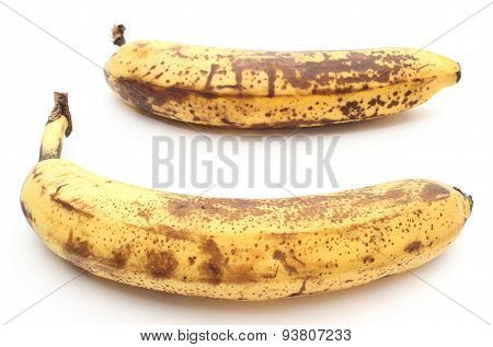 Two Old And Overripe Bananas On White Background