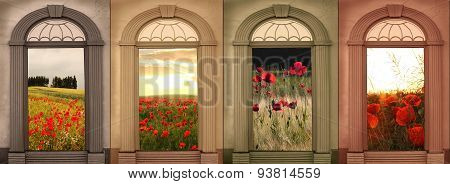 Background Design In Soft Browns; Red Poppies